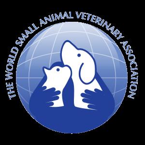 wsava logo