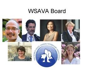 WSAVA Board