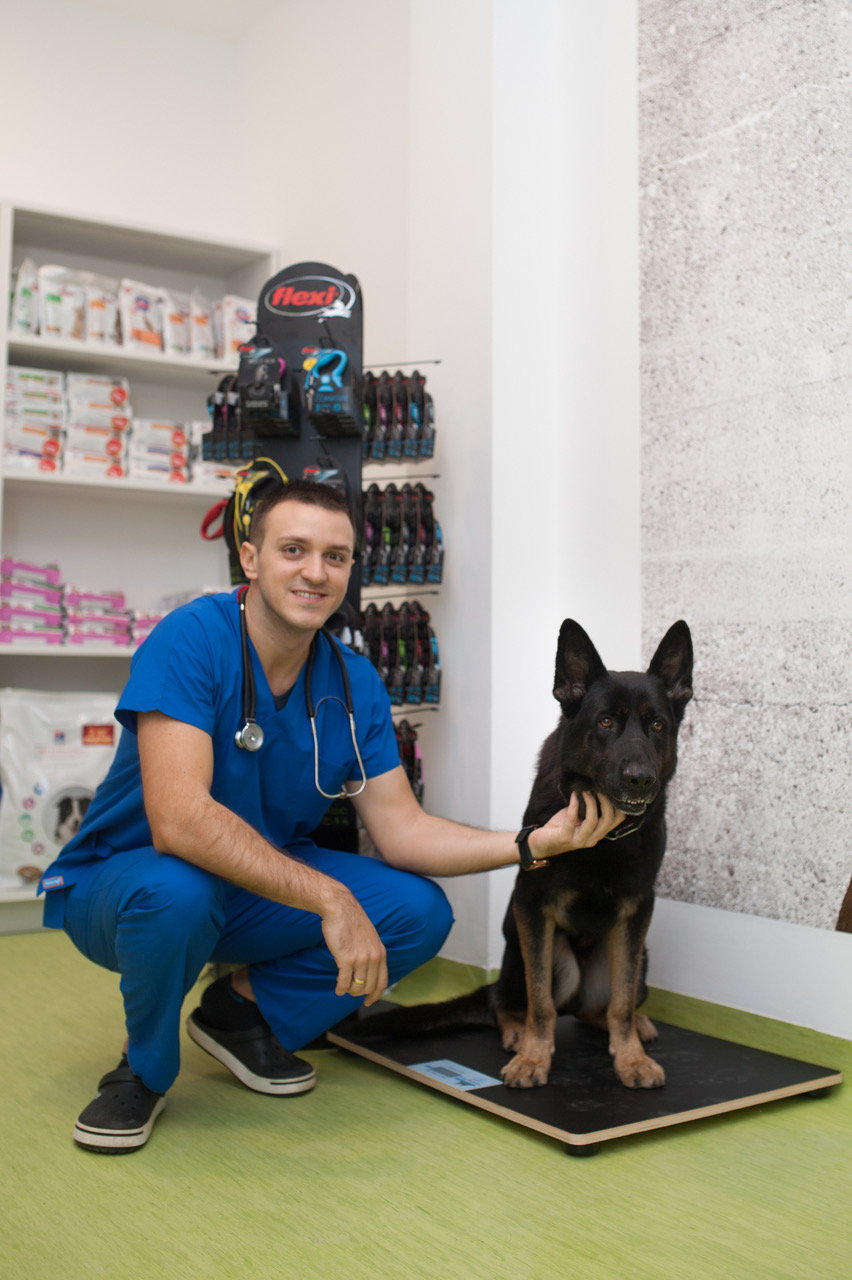 Clinical Cases – Vets on the Balkans - an online journal for